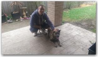 Affinity Dog Training_Charlie