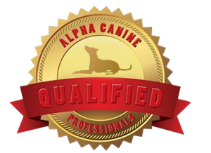 Alpha Canine Qualified Professional
